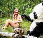 Pandafuck.com Code
